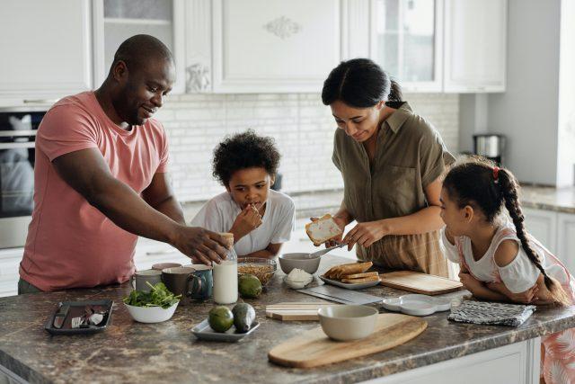 Kitchen Appliances: Breville Bluicer Pro