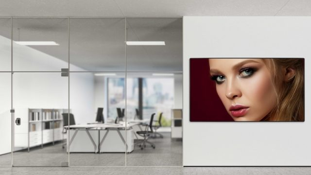 Optoma Releases New LED Display